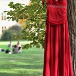Red-dress-for-web