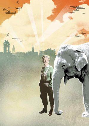 elephant-image-FOR-WEB