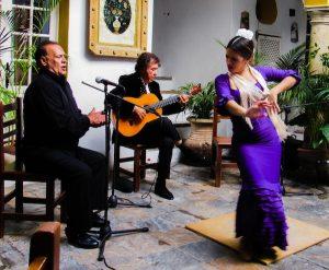 Juan Martin Flamenco Trio 17 web